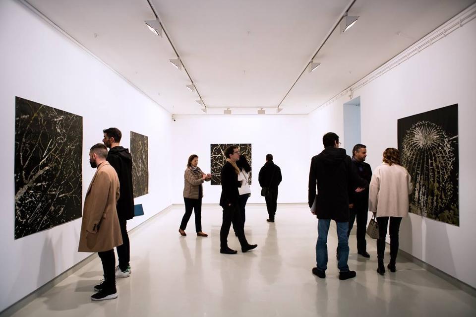 Galerias abrem novas exposições na Rua Miguel Bombarda