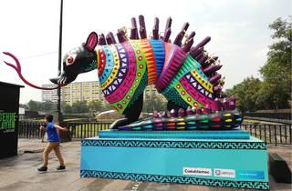 Viaje al Mictlán en Tlatelolco (Foto: Orianna Martínez)