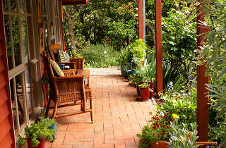 Two wicker chairs on a brick verandah surrounded by plants
