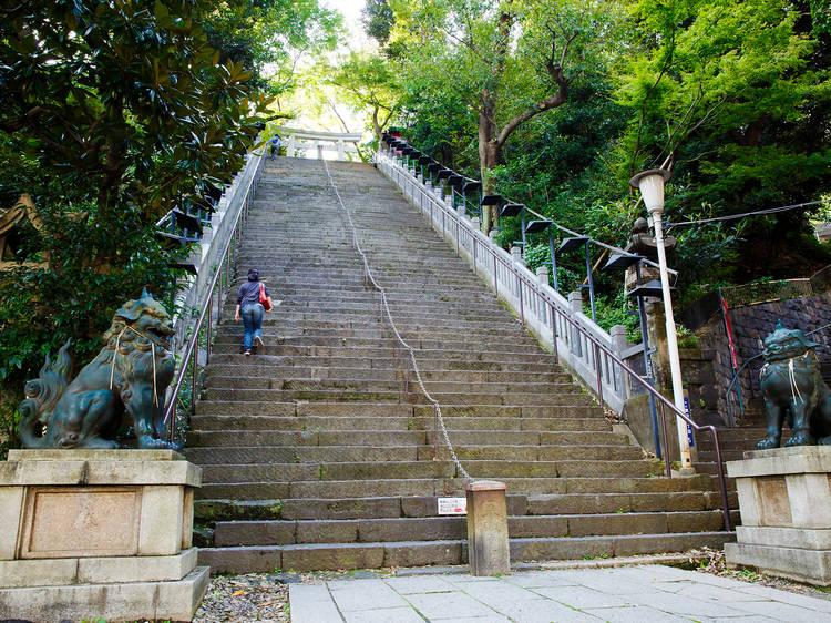 壁のようにそり立つ階段を登る。