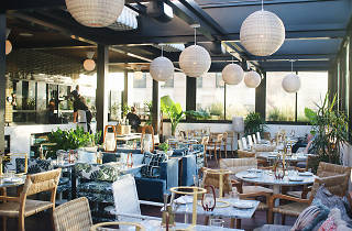 Pilot rooftop restaurant Hoxton DTLA