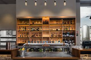 The bar of Sydney Brewery Surry Hills