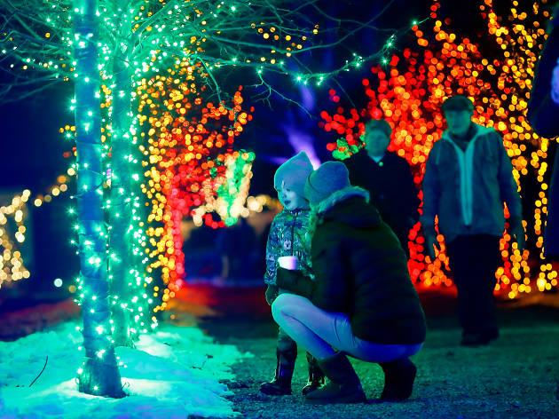 Winterlights Naumkeag