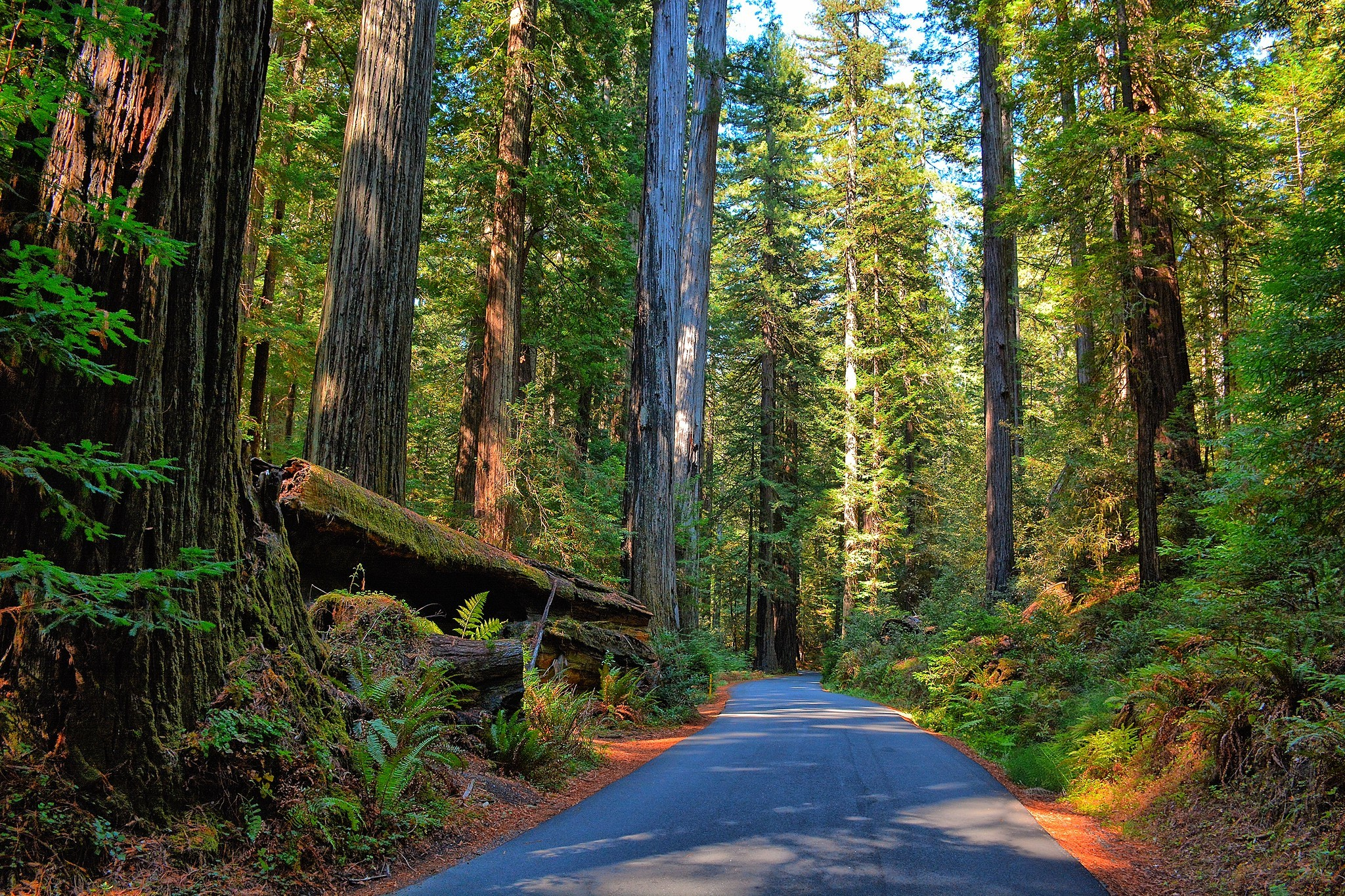 The 15 best pit stops on a California road trip