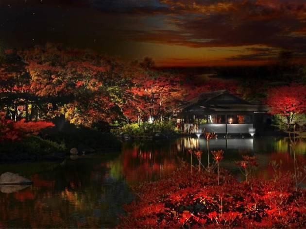 黄葉紅葉まつり/秋の夜散歩