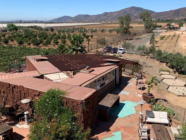Qué hacer en Valle de Guadalupe: viñedos y gastronomía