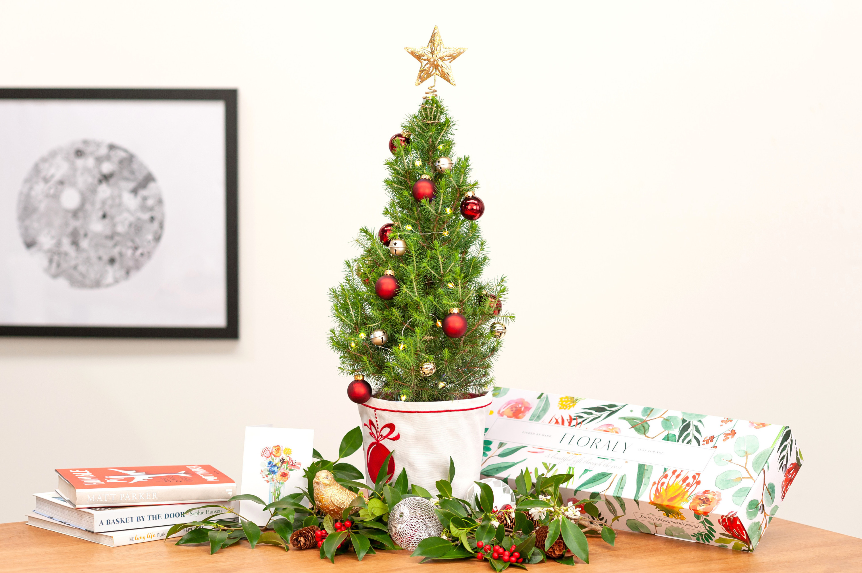 Sydneysiders can order tiny, living Christmas trees direct to their door (and delivery is free)