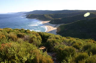 Garie Beach in the Royal National Park