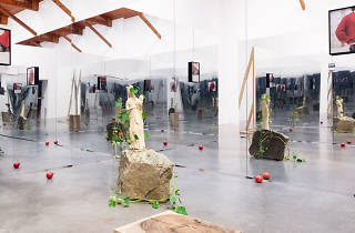 Galeria Kurimanzutto, Danh Vo