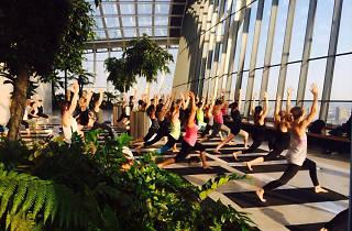 Encuentro de Yoga