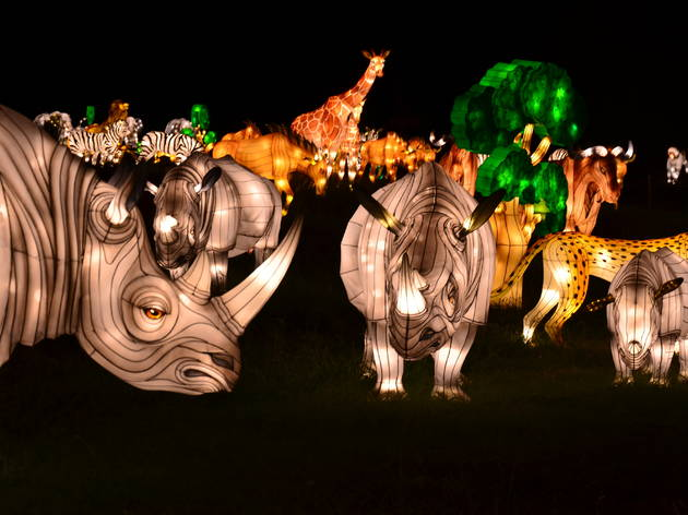Bronx Zoo Christmas Lights 2020 Bronx Zoo Holiday Light Show | Bronx Zoo Wildlife Conservation