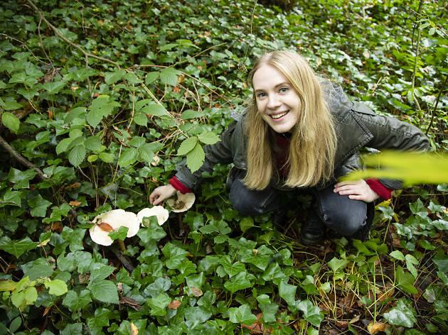 Time Out London Nature Fungi Sydenham Hill