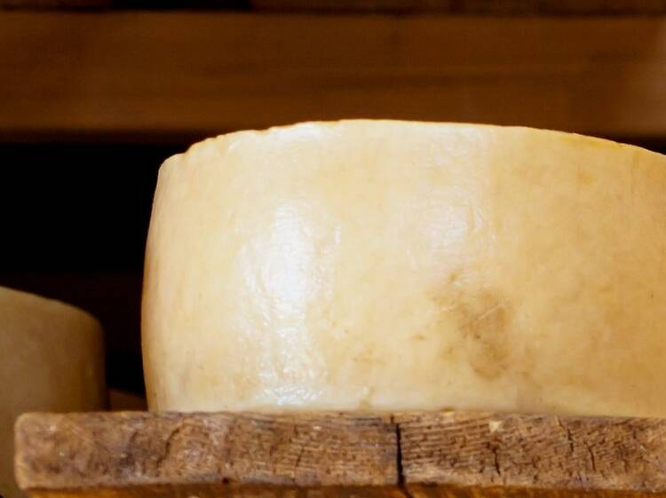 Gligora cheeses from Pag Island win medals at the 2021 Great Taste Awards