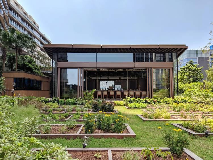 Hong Kong's best urban green spaces