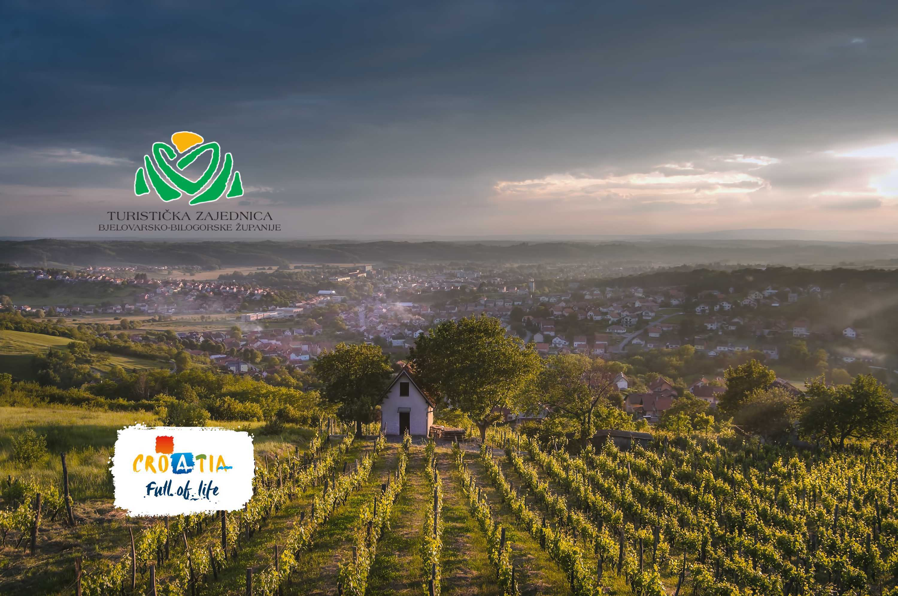 Discover the brilliant wines of Bjelovar-Bilogora County