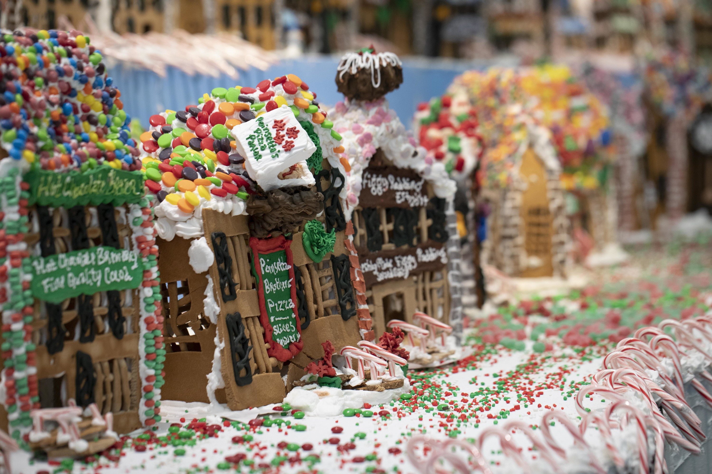Gingerbread Lane at NySci