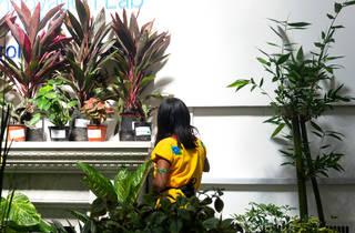 Plant Fest 2019 (Foto: Cortesía Plant Fest)