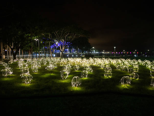 Darwin has been taken over by light installations by the man behind Uluru's 'Field of Light'