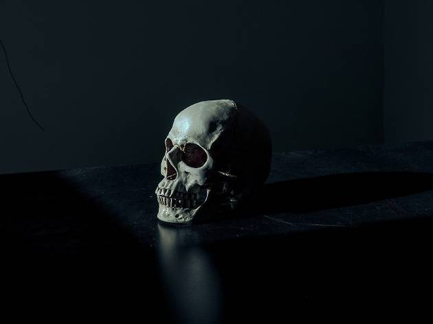 A human skull against a black background