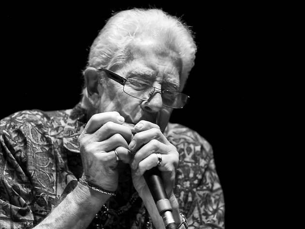 An old man plays the harmonica into a microphone.