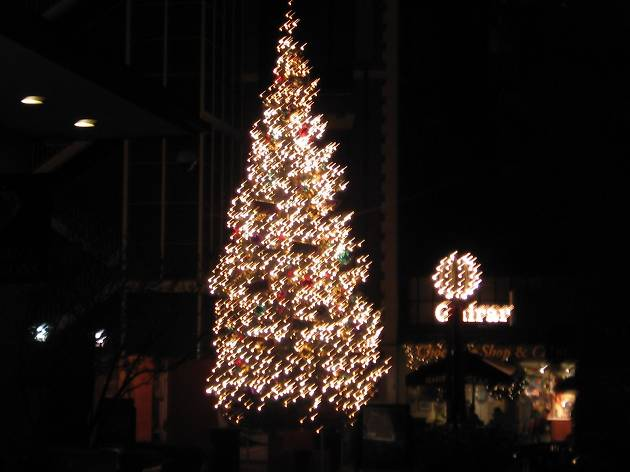 Ghirardelli Square Tree Lighting Ceremony