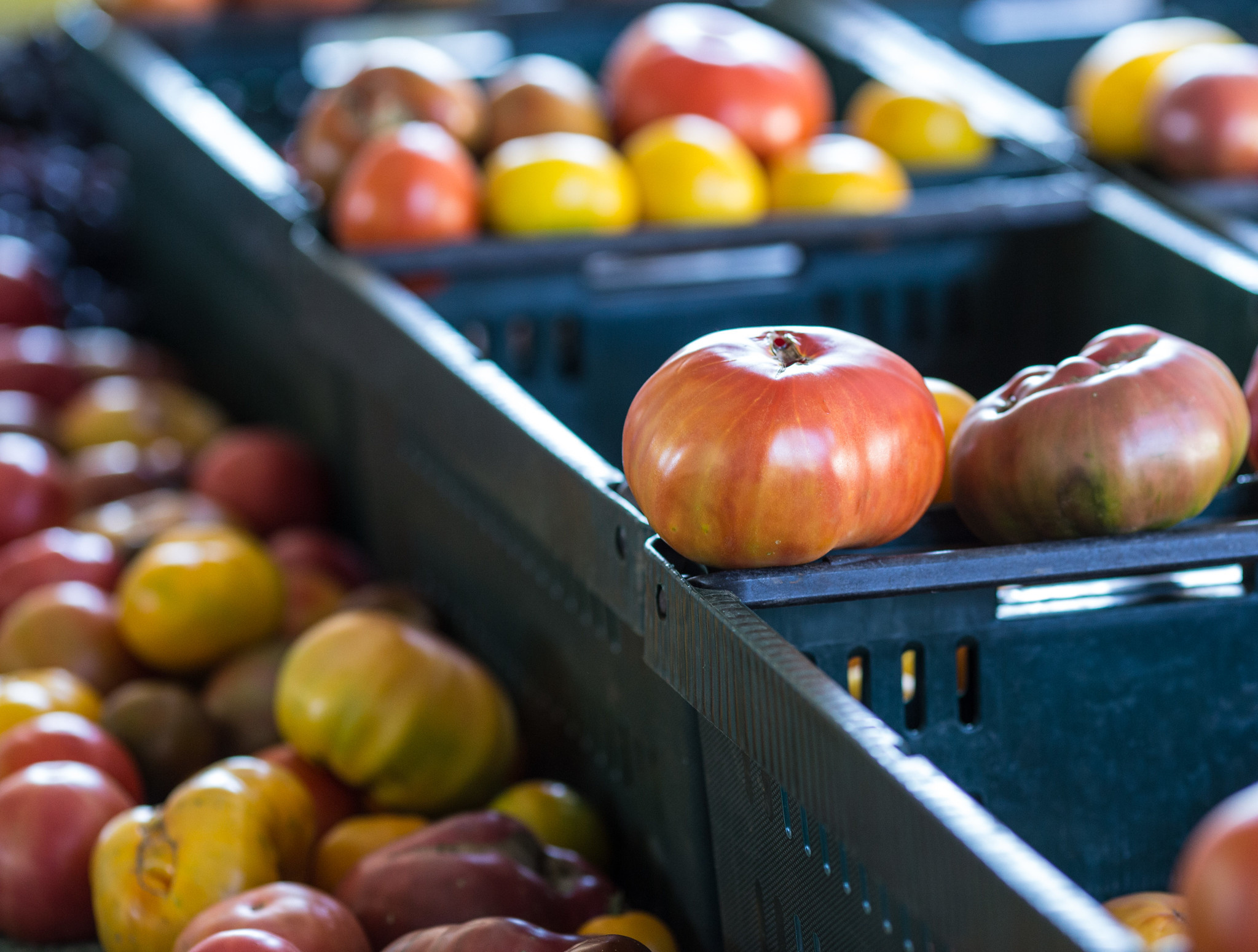 Tomatoes in crates at a farmers market
