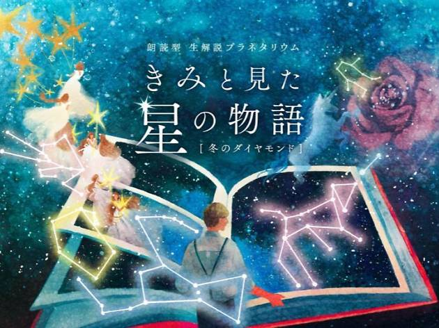 """""""きみと見た星の物語""""  冬のダイヤモンド"""