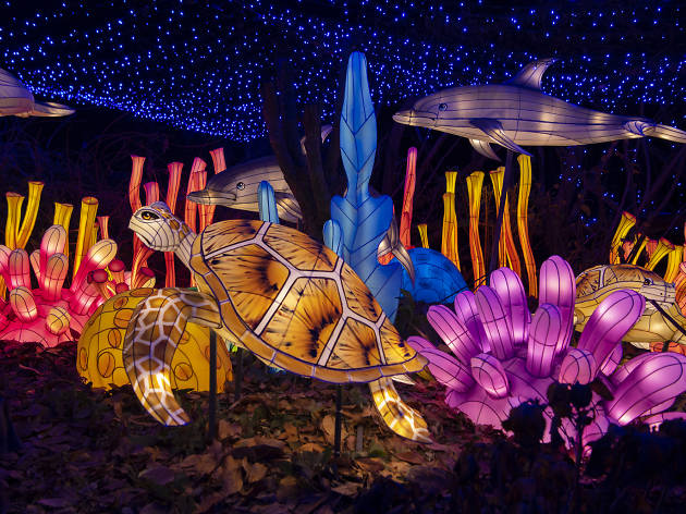 Check out this year's Bronx Zoo holiday lights