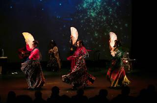 Navidad Flamenco: A Flamenco Nutcracker