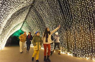 Chicago Botanic Garden, Lightscape