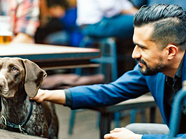 Man patting a dog in a beer garden
