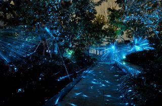 Ginza Six illumination