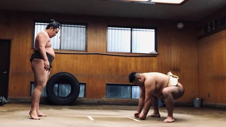 Tokyo Sumo Morning Practice Tour