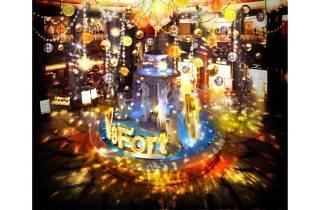 VenusFort Illumination -Grateful Harmony-