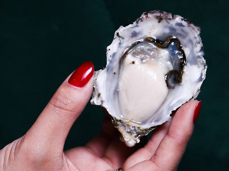 Great wind down: Martini and oysters at Employees Only