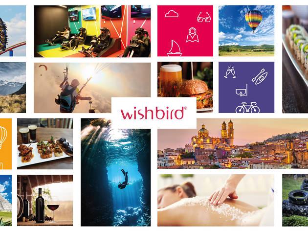 Regalos Wishbird