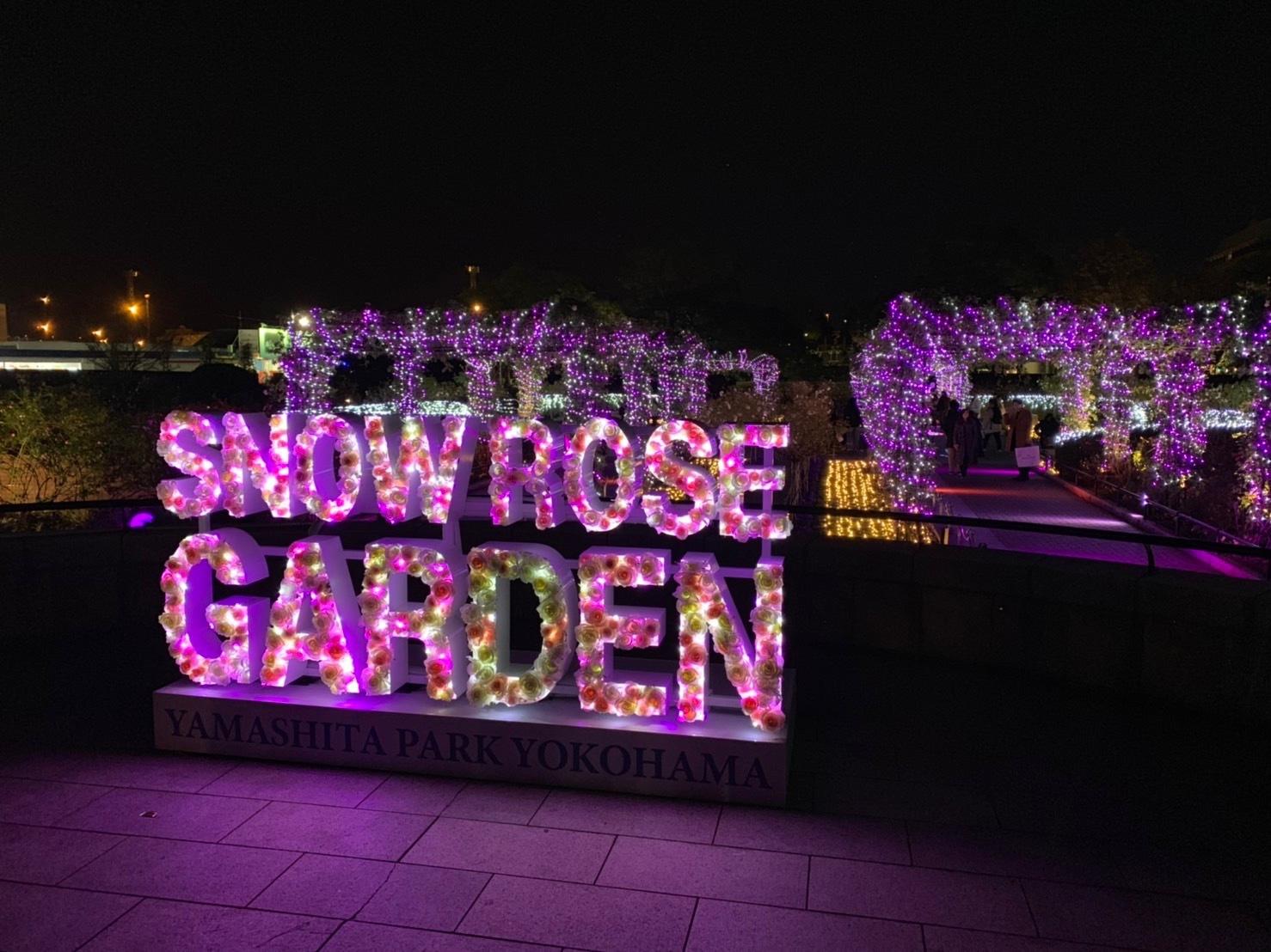 Snow Rose Garden