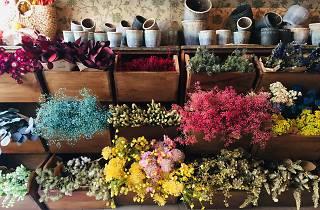 Ofelia Flowers and Tea