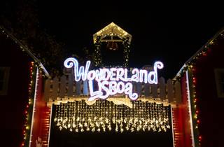 Wonderland 2019