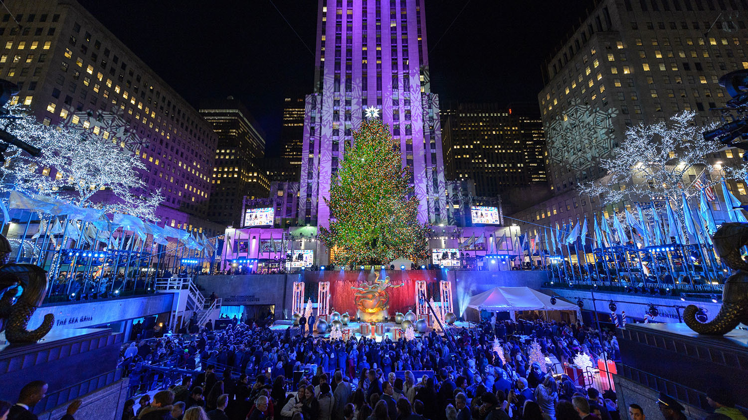 Everything you need to know about this year's Rockefeller Center Christmas Tree lighting