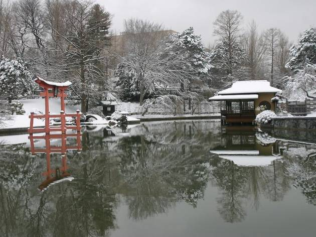 You can get into the Brooklyn Botanic Garden for free this winter