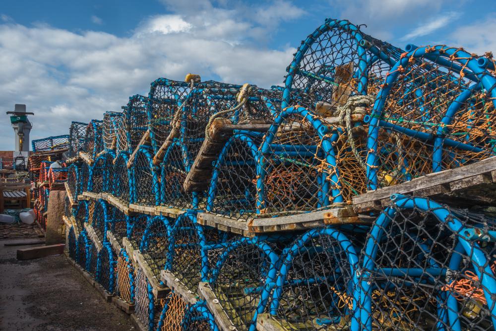 North Berwick lobster pots