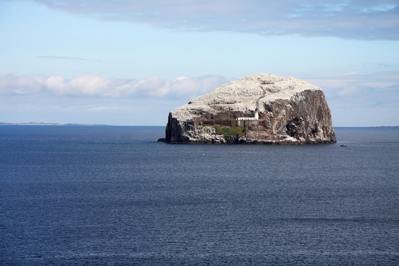 Bass Rock, North Berwick