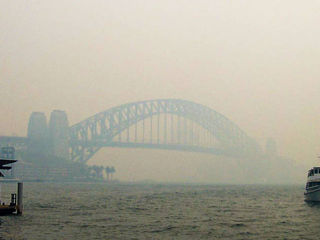 Sydney ferries are suspended as the city chokes on record breaking smoke