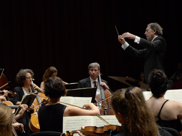 Concert de Nadal de l'Orquestra de Cambra Catalana