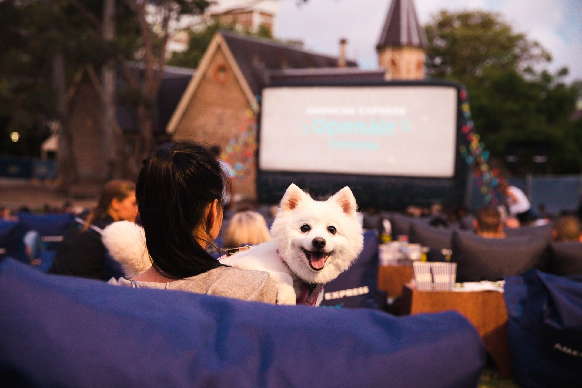 A person and a dog at an outdoor cinema.