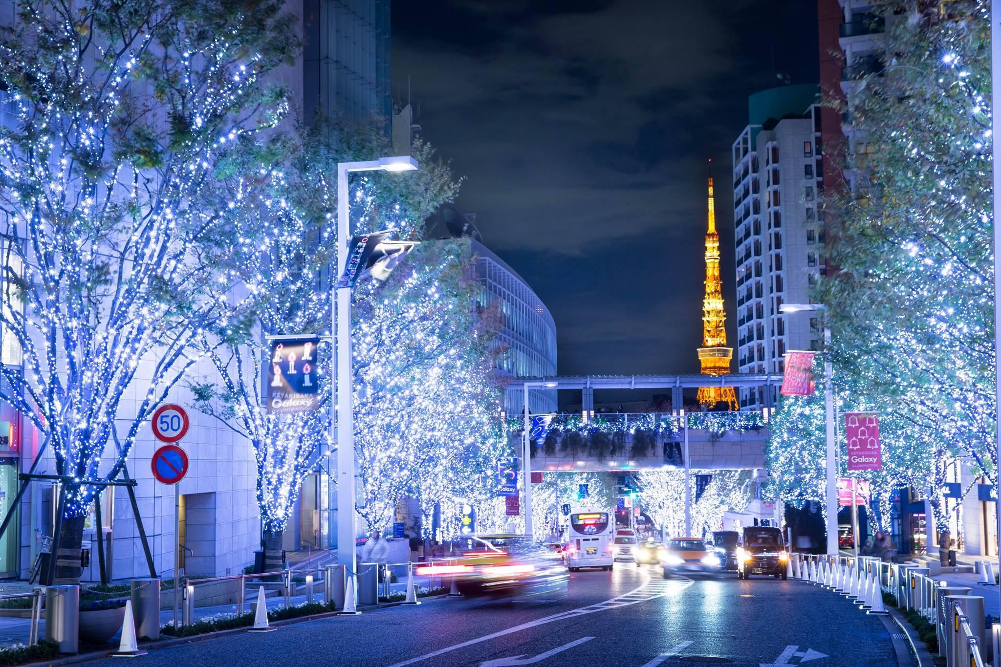 Keyazaka Illuminations