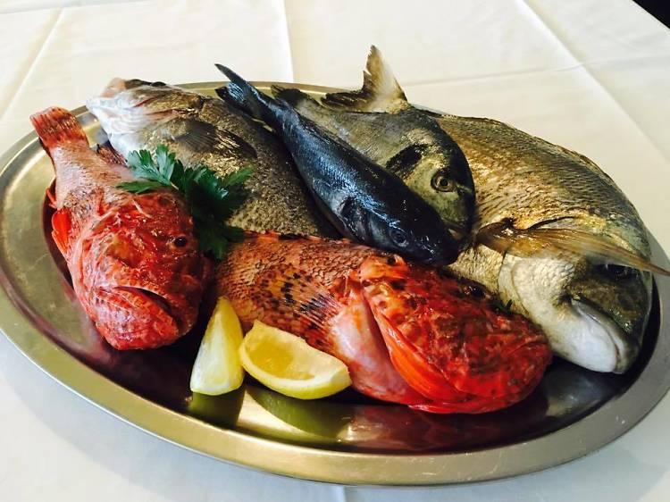 Dine on divine seafood at Lino