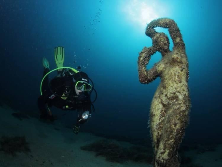 See a Victorian shipwreck