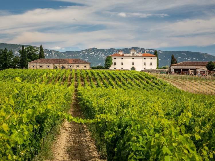 Inland Istria